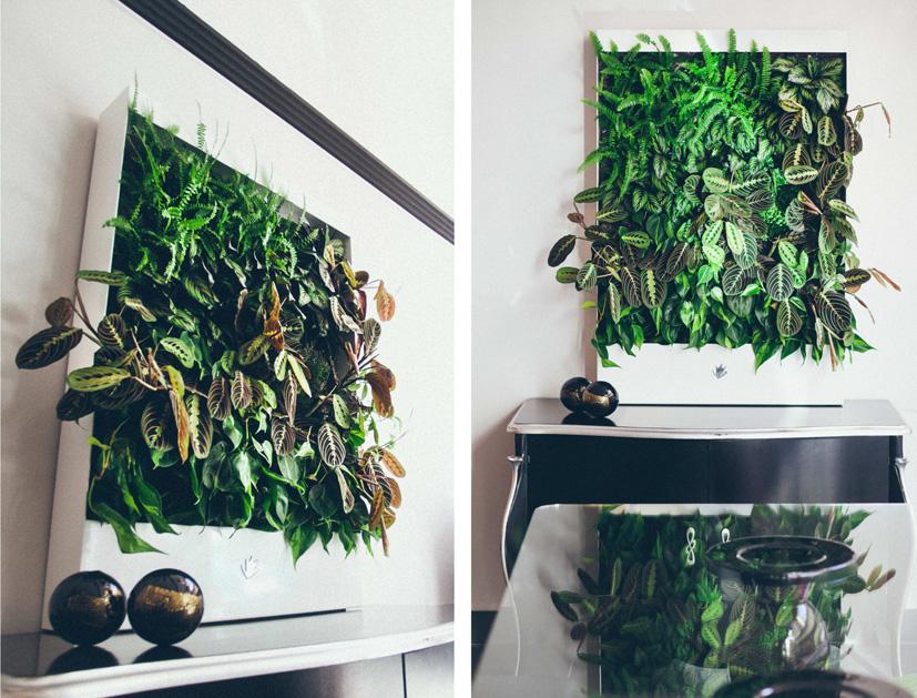 Cuadros vegetales Paivert - Paivert