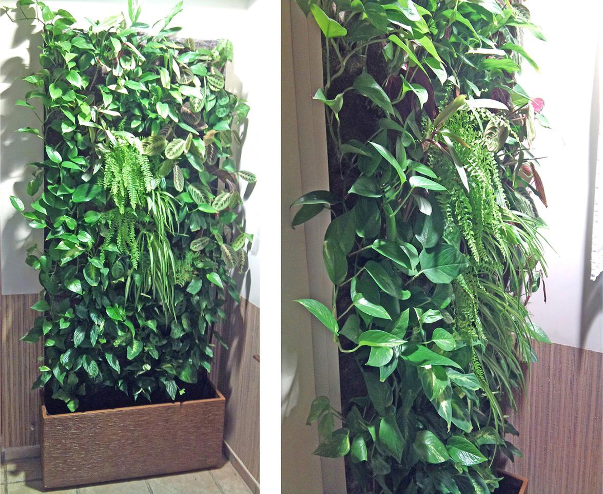 Como humidificar el ambiente como humidificar el ambiente - Humidificar el ambiente ...