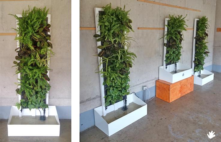 1ª Masterclass jardines verticales